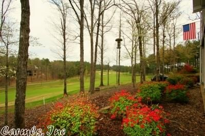 33 Princesa Dr., Hot Springs Village, AR 71909 Photo 39
