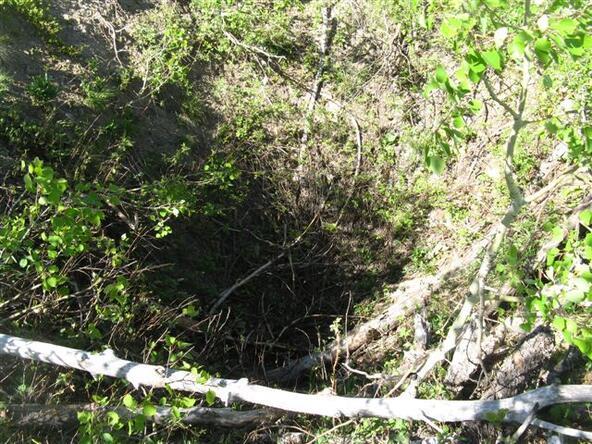 Cutting Mine Rd., Lead, SD 57754 Photo 55