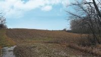 Home for sale: Lot 4 County Rd. 18, Waterloo, IN 46793