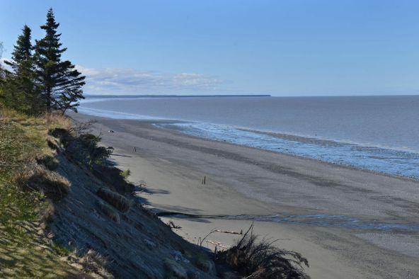 34605 Kalifornsky Beach Rd., Kenai, AK 99611 Photo 3
