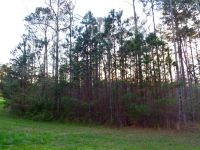 Home for sale: Lot 2 Stoney Point Landing, Double Springs, AL 35553