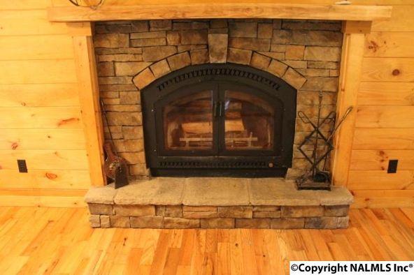 4475 County Rd. 106, Mentone, AL 35967 Photo 12