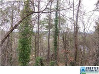 Home for sale: 1419 Panorama Dr., Vestavia Hills, AL 35216
