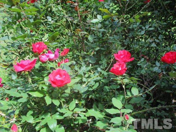 6205 Quail Side Ct., Raleigh, NC 27603 Photo 22