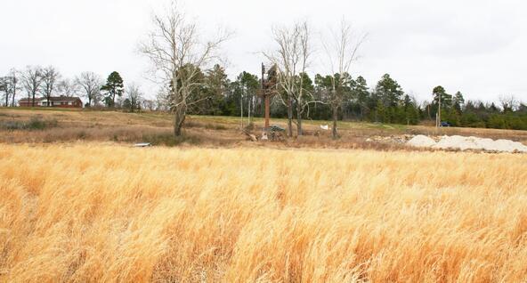 278-V Hwy. 64 E., Conway, AR 72032 Photo 15