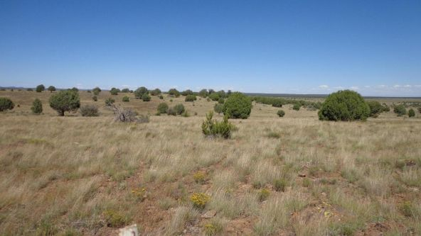 645 Westwood Ranch Lot 645, Seligman, AZ 86337 Photo 3