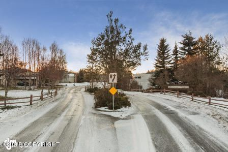 L28 B1a Chiniak Bay Dr., Anchorage, AK 99515 Photo 6