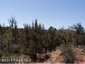 1024 Sierra Verde Ranch, Seligman, AZ 86337 Photo 19
