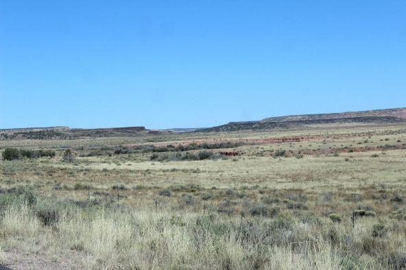 7209 N. Hwy. 191 --, Sanders, AZ 86512 Photo 22