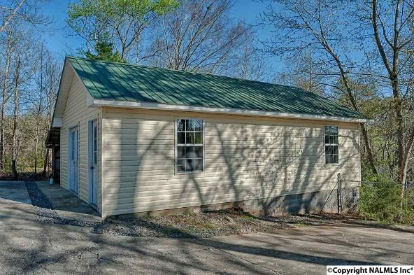 3065 Union Hill Rd., Union Grove, AL 35175 Photo 7