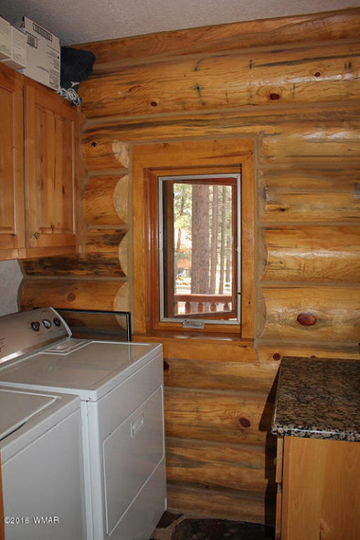 38721 State Route 373, Greer, AZ 85927 Photo 27