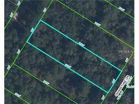 Home for sale: Grindstone Dr., Webster, FL 33597