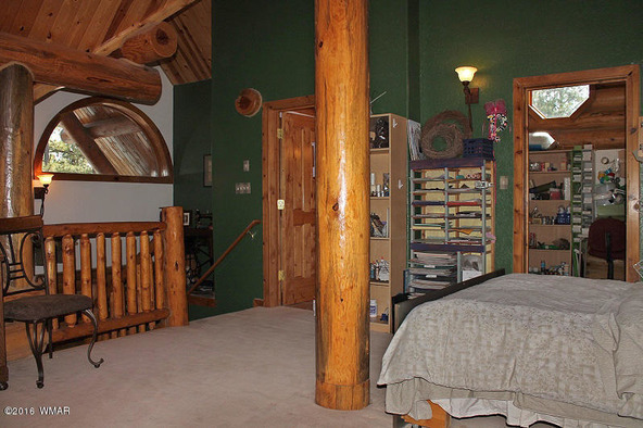 38721 State Route 373, Greer, AZ 85927 Photo 54