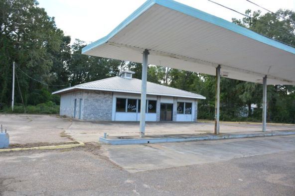 2590 Hwy. 84, Daleville, AL 36322 Photo 1
