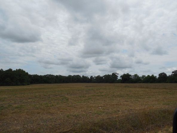 7.8acres Hardy Rd., Rehobeth, AL 36301 Photo 10