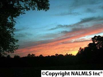 1172 County Rd. 639, Mentone, AL 35984 Photo 1