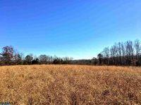 Home for sale: Lot 8 Dylan Cir., Charlottesville, VA 22901