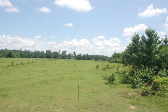 4534 Us Hwy. 31, Castleberry, AL 36432 Photo 21