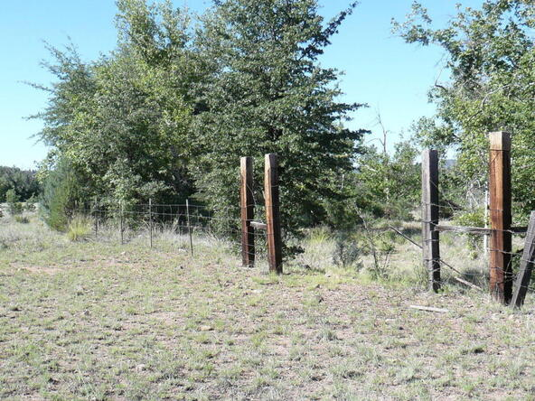 200 E. Cline Crossing, Young, AZ 85554 Photo 62