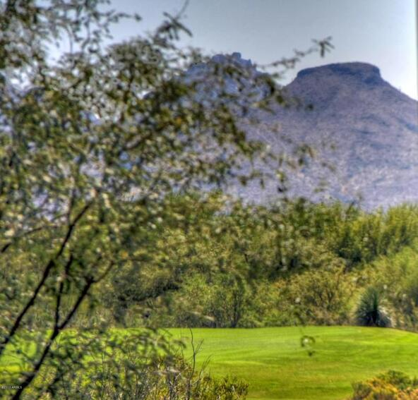 39493 N. 107th Way, Scottsdale, AZ 85262 Photo 79