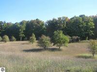 Home for sale: 7835 Floreys Ranch Rd., Buckley, MI 49620