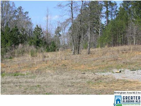 4135 Warrior Jasper Rd., Dora, AL 35062 Photo 3