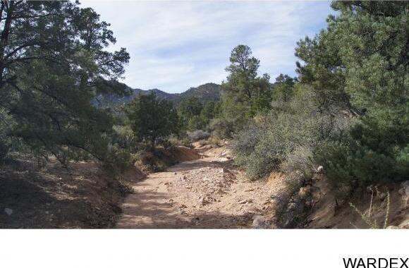 9999 N. Trap Springs Rd., Hackberry, AZ 86411 Photo 35