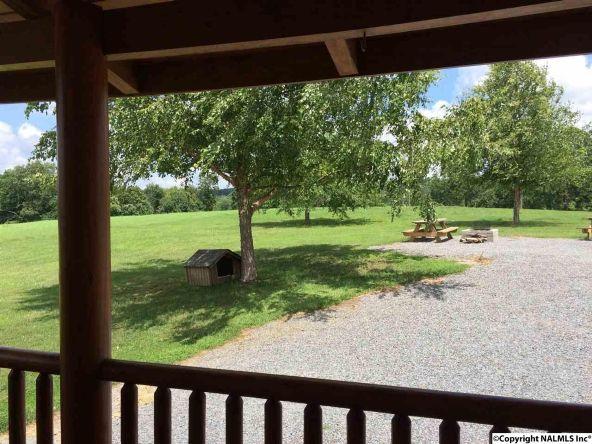 2305 Burton Loop Rd., Altoona, AL 35952 Photo 15