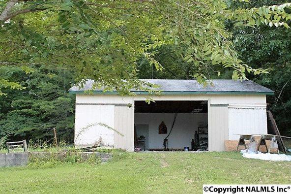 11235 Alabama Hwy. 117, Valley Head, AL 35989 Photo 15