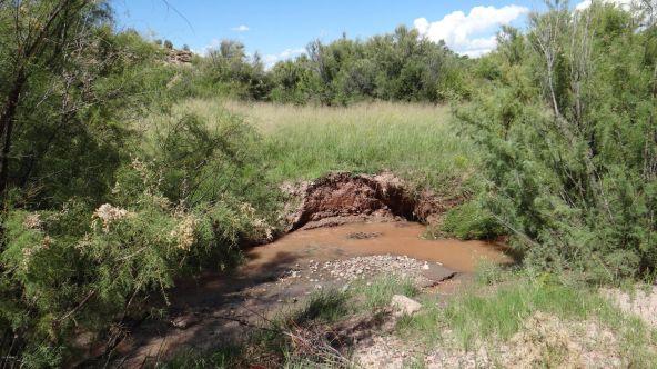 99 River Springs Ranch Unit 3 --, Saint Johns, AZ 85936 Photo 2