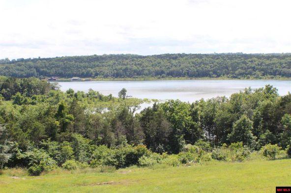7401 E. Harbor Dr., Lead Hill, AR 72644 Photo 6