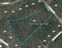 Home for sale: 1129 Sunset Point Dr., Connelly Springs, NC 28612