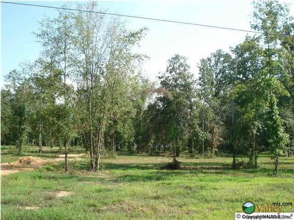 5 Armstrong Rd., Cedar Bluff, AL 35959 Photo 4