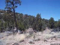 Home for sale: Lot 511 Sierra Verde Ranch, Seligman, AZ 86337