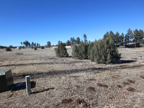 2728 Bain Trail, Overgaard, AZ 85933 Photo 3