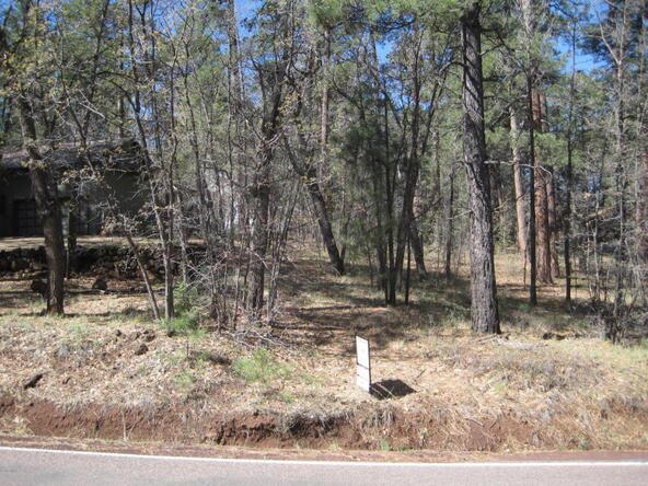 6645 Country Club, Pinetop, AZ 85935 Photo 3