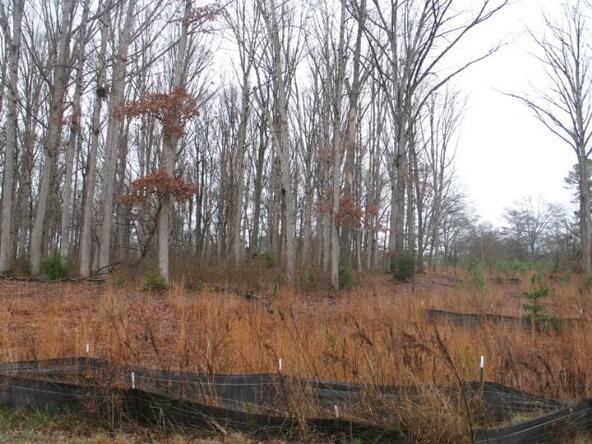 Lot #2 Concord Rd., Anderson, SC 29621 Photo 1