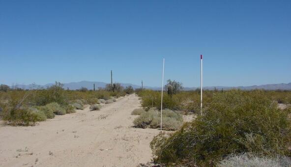 3xx N. 557th Avenue, Tonopah, AZ 85354 Photo 12