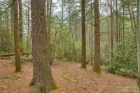 Home for sale: Lot 75 Long Lake Trail, Sapphire, NC 28774