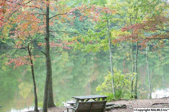 3 South Bluff Trail, Huntsville, AL 35803 Photo 25