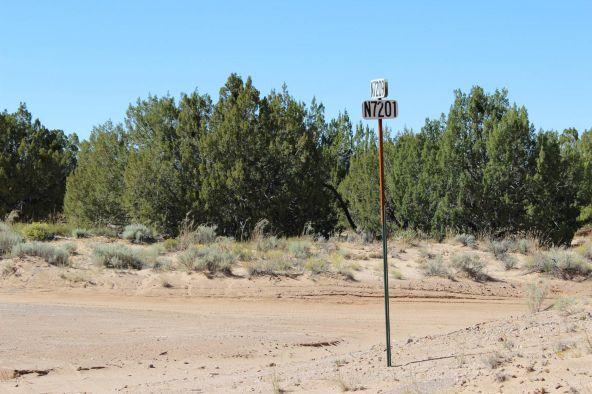 7209 N. Hwy. 191 --, Sanders, AZ 86512 Photo 18