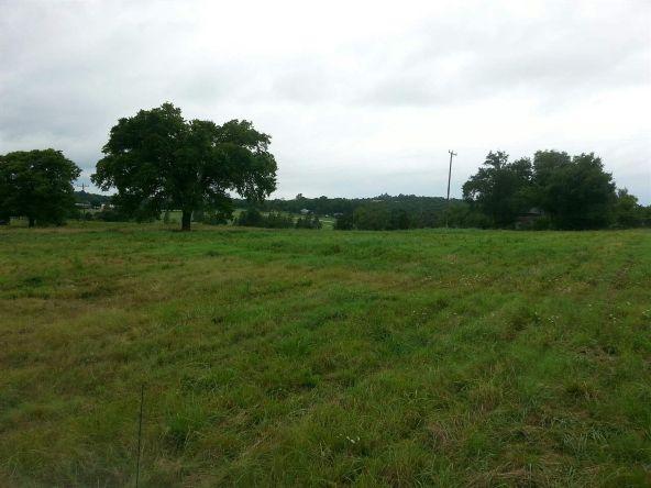 17001 N. Hwy. 7, Lead Hill, AR 72644 Photo 4