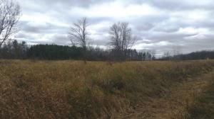 27.55 Acre State Hwy. 32, Sheboygan Falls, WI 53085 Photo 11