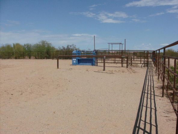 21038 W. Quails Nest Ln., Wittmann, AZ 85361 Photo 37