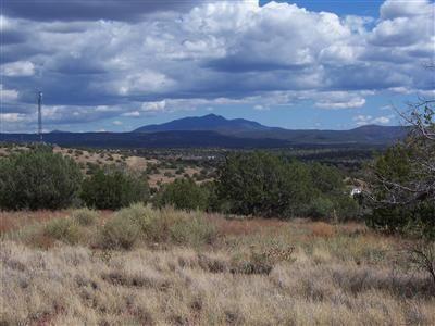 204 Juniperwood Rnch Un 3 Lot 204, Ash Fork, AZ 86320 Photo 4