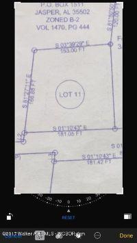Home for sale: Lot 11, Summit Dr., Jasper, AL 35501
