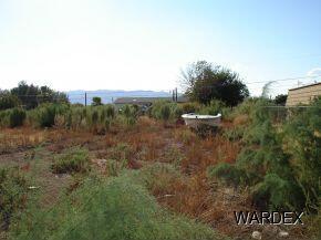 10569 S. Lead Ln., Mohave Valley, AZ 86440 Photo 1