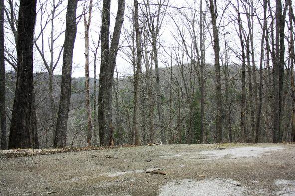 490 Cliffview, Campton, KY 41301 Photo 89