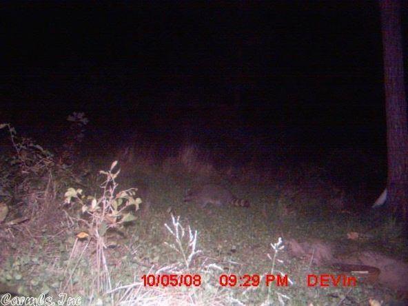 1127 Nature Dr., Saint Joe, AR 72675 Photo 20