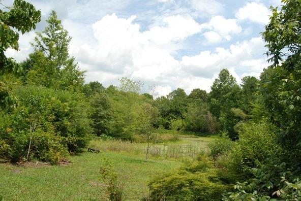 70 County 944 Rd., Mentone, AL 35984 Photo 31